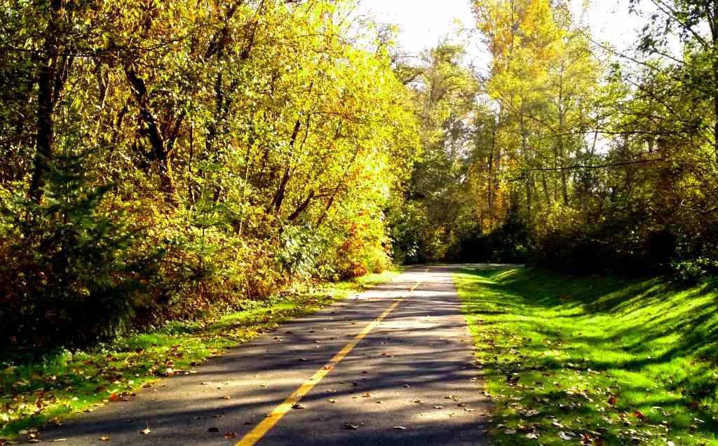 Des Moines Creek_1